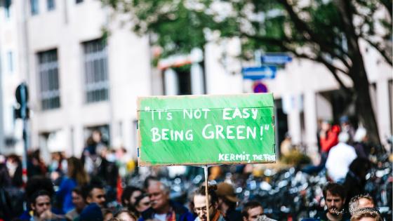 Por una economía verde (de verdad)
